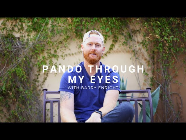 Barry Enright: Pando Through My Eyes