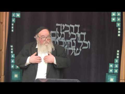 Stem Cell Research in Halacha- HaRav Dr. Yitzchak Breitowitz