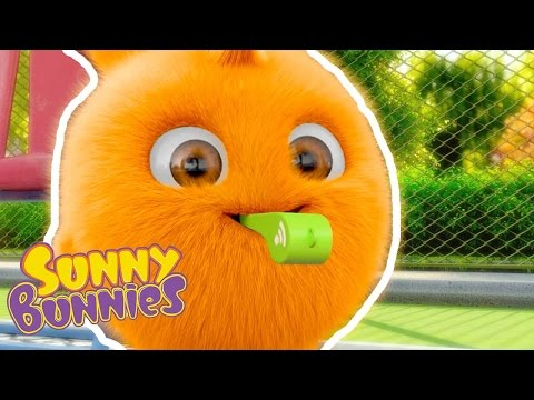 Sunny Bunnies - Whistle Away -  Brand New Compilation - Funny Cartoons for Children