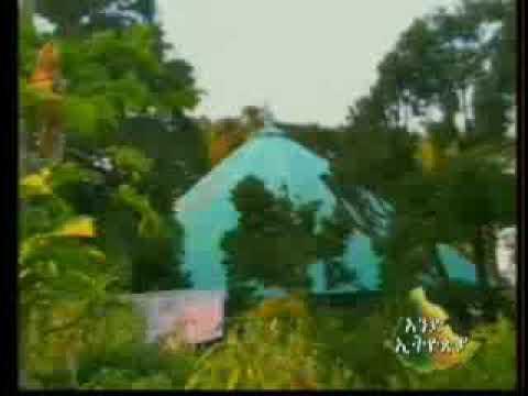 Aend Ethiopia Gojjam ጎጃም Video 1