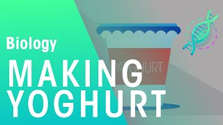 Video Tutorial to Learn How to make yoghurt pdf | Step by Step Guide for  How to make yoghurt pdf