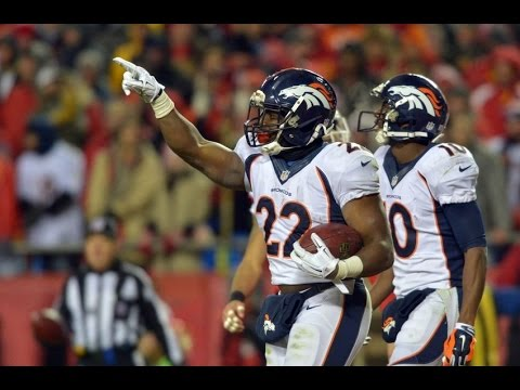 CJ Anderson Denver Broncos Highlights 2014