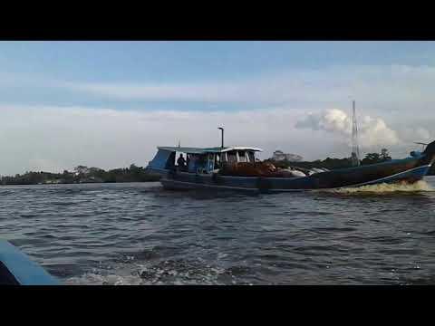 Kampar river (sungai kampar)