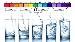 Alkaline Vs Distilled Water