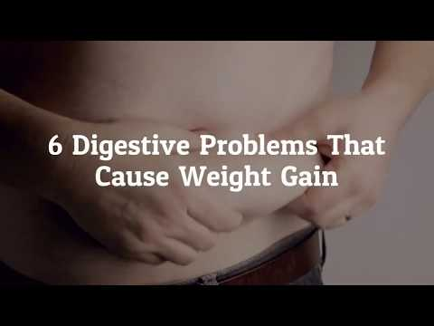 6 Digestive Problems that cause Weight Gain | Elce Hernia Clinics  | Endoscopy | Diagnostic | Centre