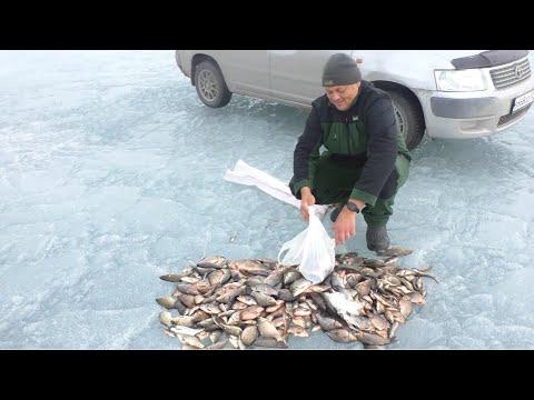 ПОПАЛИ НА ЖОР КАРАСЯ!рыбалка на карася весной!ловля карася на удочку