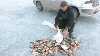 ПОПАЛИ НА ЖОР КАРАСЯ рыбалка на карася весной ловля карася на удочку