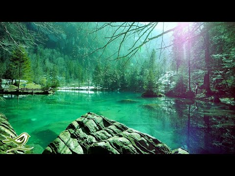 Relaxing Sleep Music • Deep Sleeping Music, Relaxing Music, Stress Relief, Meditation Music (Flying)