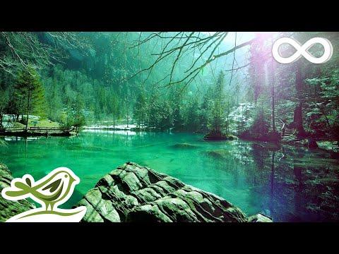 Relaxing Sleep Music: Deep Sleeping Music, Relaxing Music, Stress Relief, Meditation Music ★68 - Ржачные видео приколы
