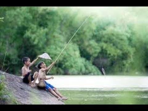 Fishing – Mùa câu cá chép, chọn thời điểm câu cá mùa thu, câu cá sông