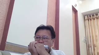 SAY YOU WILL  ( David Liang )  -  Hòa tấu Harmonica .