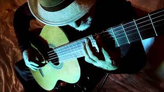 Blackbird - Beatles  (Michael Lucarelli, guitar)
