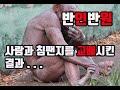 사람과 침팬지를 교배시킨 미친박사. 그리고 교배종의 발견 - YouTube