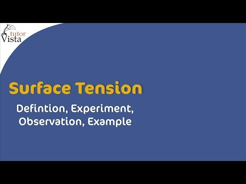 Surface Tension Youtube