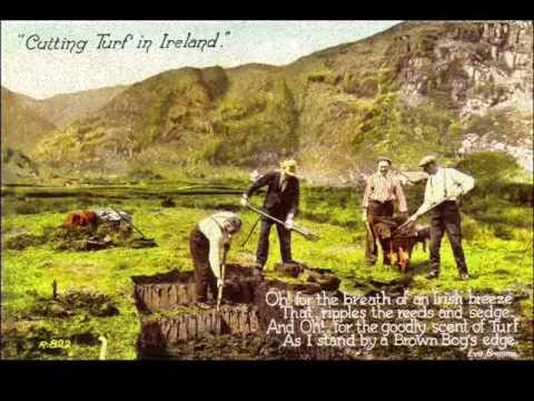 Pecker Dunne - Wexford
