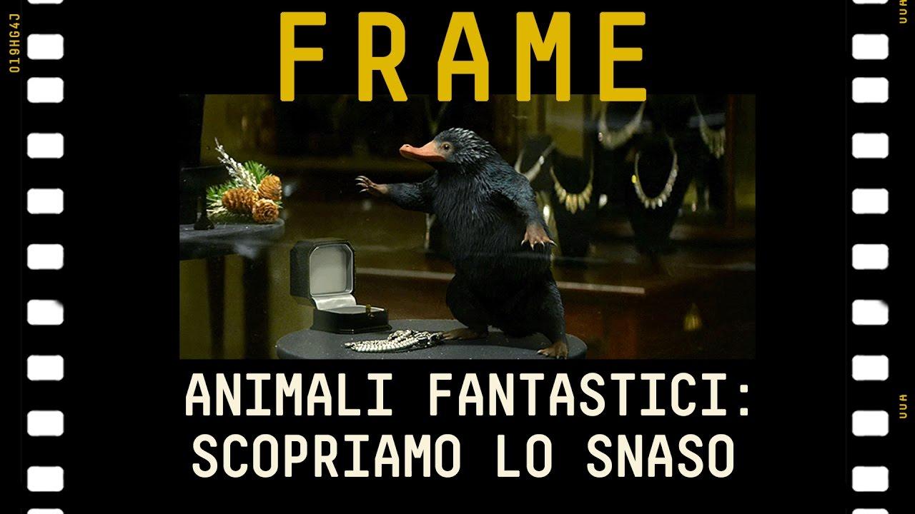 Animali Fantastici: scopriamo Lo Snaso #FRAME - YouTube
