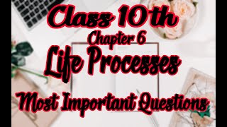 10th Class Science Important Questions 2019   Chapter 6   Life Processes