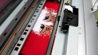 Печать картинки на красной футболке(Прямая печать изображения на цветной футболке http://copytimer.ru Печать производится в копировальном центре