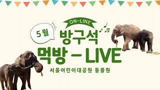 [서울어린이대공원 동물원] 5월 방구석 먹방 Live썸네일