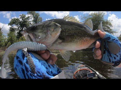 Fishing Lake O' Pines