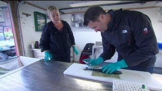 euronews innovation - Fresh fish supper
