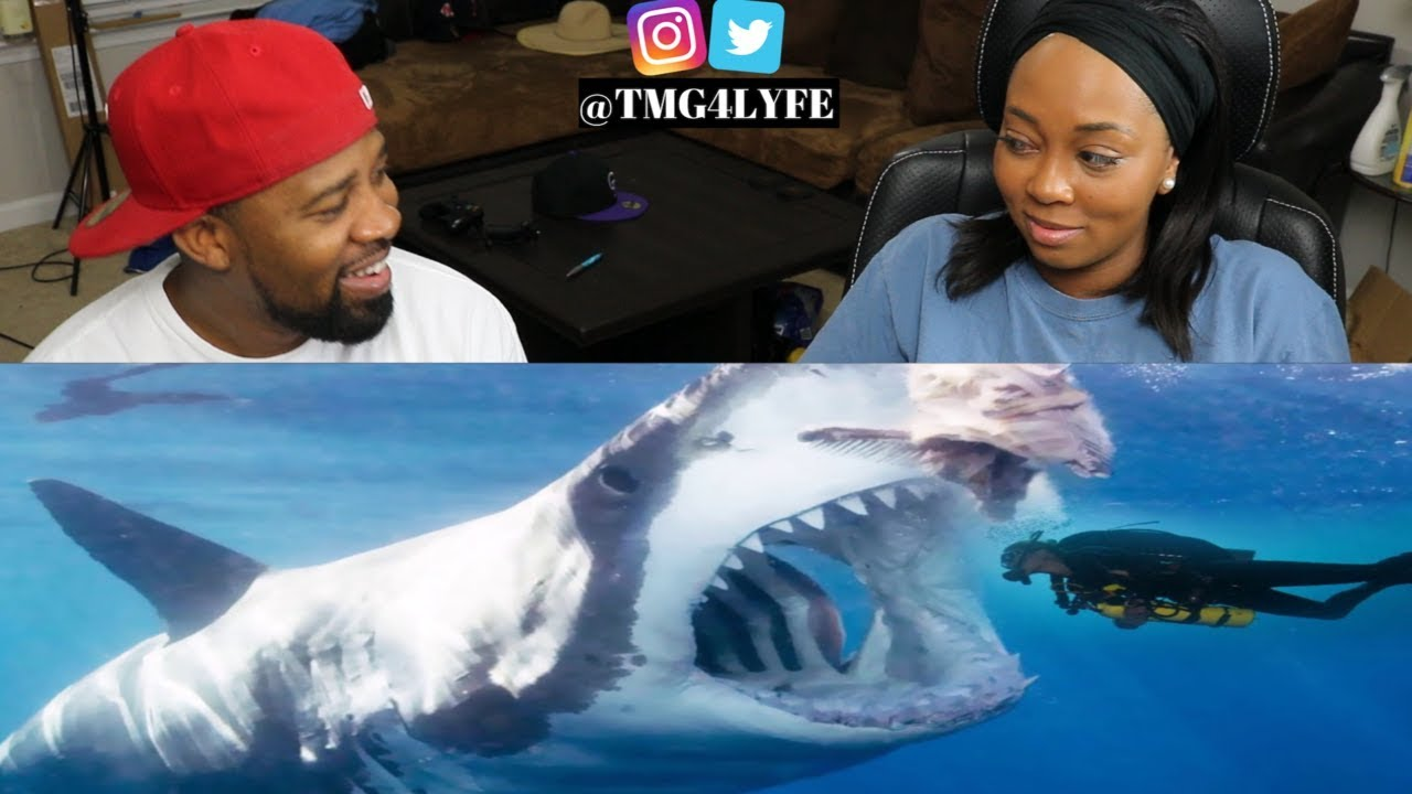 5 Megalodon Caught On Camera Spotted In Real Life 2 Reaction Youtube