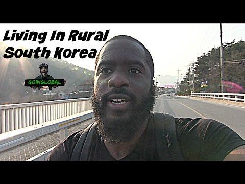 LIVING IN RURAL SOUTH KOREA | VLOG 1