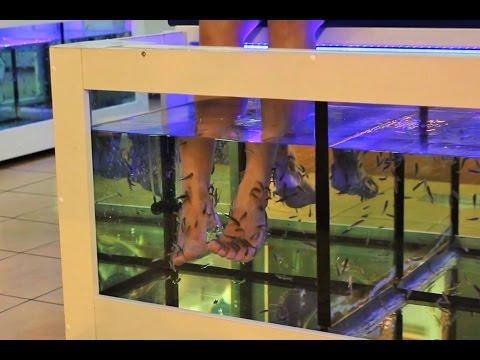 Экзотика. Пилинг педикюр рыбками в Испании. Фиш-пилинг стоит ли делать?