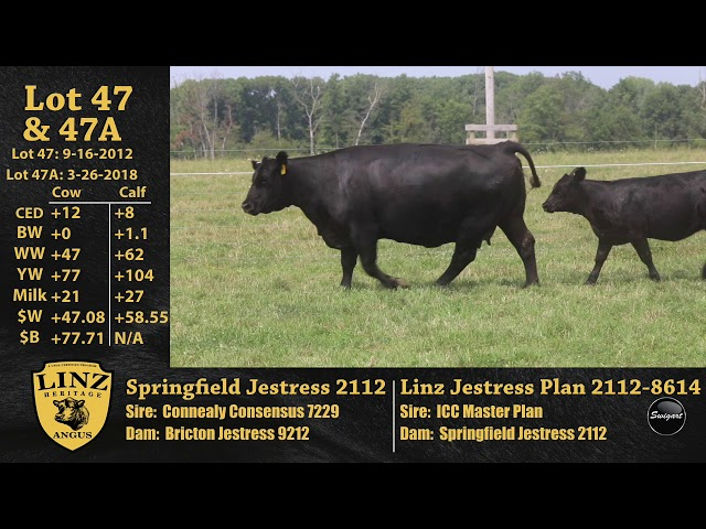 Linz Heritage Angus Lots 47 and 47A