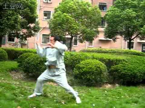 Master Ma Baoguo Hunyuan Xingyi Taiji 26 Form