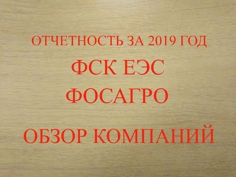 Годовая отчётность Фосагро и ФСК ЕЭС за 2019 год. Обзор компаний.