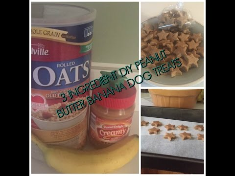Homemade Peanut Butter Banana Dog Treats.....Just 3 Ingredients!