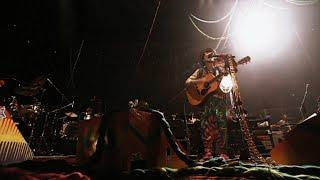 ハナレグミ - 「光と影」 Live Video