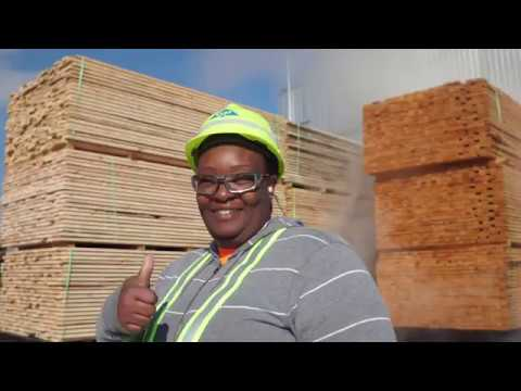 Georgia-Pacific Talladega Lumber Mill Tour