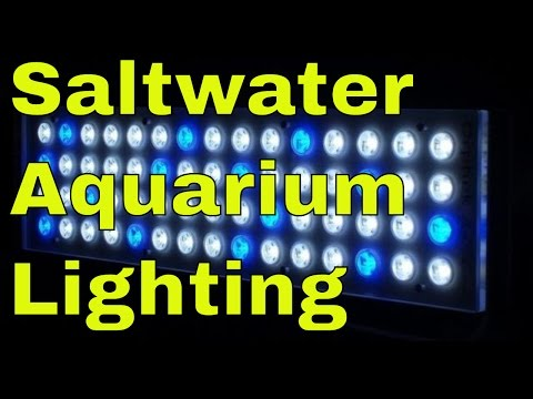 saltwater aquarium lighting