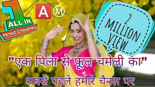 """2017 new song """"एक पिला सा फूल चमेली का"""" with ALL IN ONE CHANNEL"""