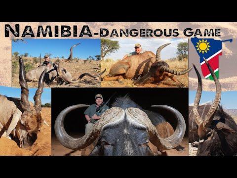 Hunting Dangerous Game - Namibia. Take Two