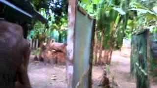 paintball guerra na selva maranguape