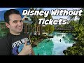 Disney World without a ticket 🎫