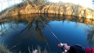 ТАКОЕ БЫВАЕТ РАЗ В 4 ГОДА Рыбалка на спиннинг на реке Иловля 29 февраля 2020 года