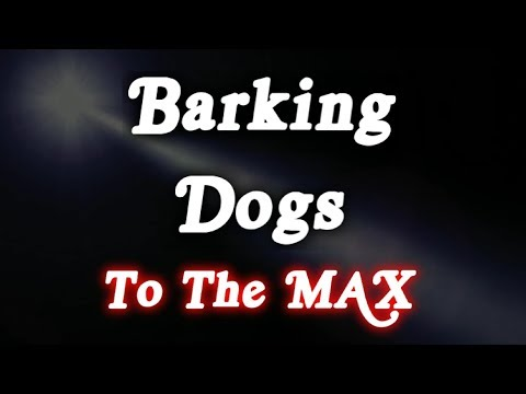 ▶️ DOGS BARKING SOUND EFFECT. BARKING DOGS TO THE MAX! DOGS BARKING NOISES. 12 HOURS. 📢