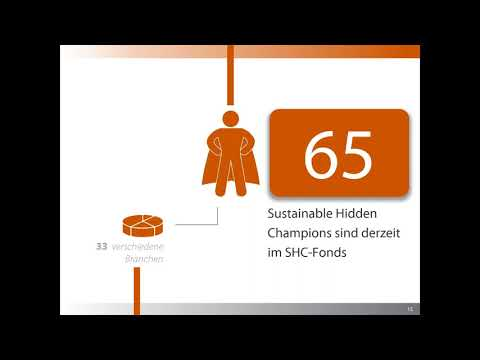 Sustainable Hidden Champions Equity Fonds  How money can make the world a better place