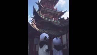 Panda dance Tivoli Garden Kiin. kiin