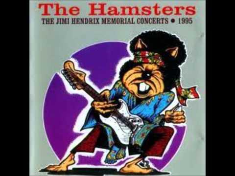 The Hamsters - 51st anniversary (Jimi Hendrix cover)