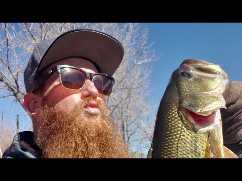 Bite On Every Cast!  Winter Bass Fishing.