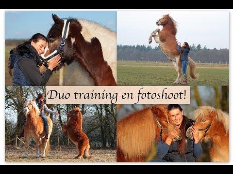 VLOG dag 2|| Al mijn paarden zijn ingepikt! Weer uit elkaar..