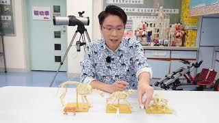 Publication Date: 2021-08-31 | Video Title: 聖公會將軍澳基德小學STEM節目:森林走廊 x STEM S