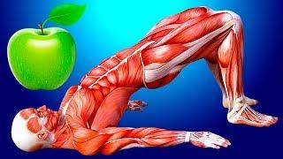 Начните съедать по яблоку в день и увидите, что будет с вашим телом