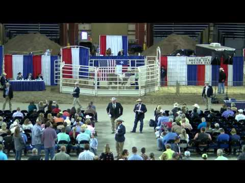 2017 YMBL SouthTexas State Fair - Youth Livestock Auction