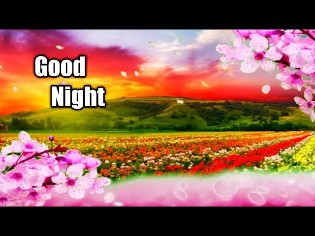 Beautiful GOOD NIGHT whatsapp video in tamil